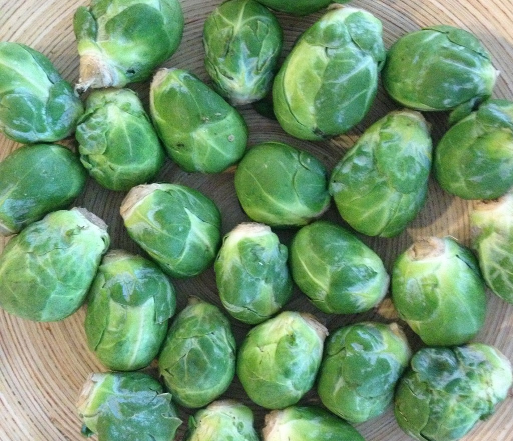 brussel-sprouts-233125_1920