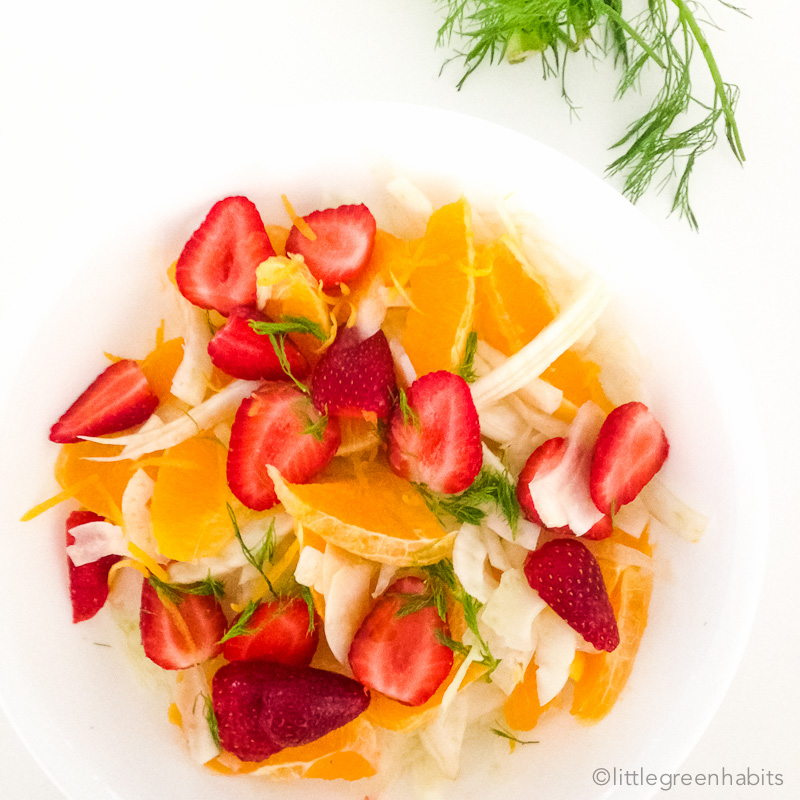 Strawberry and Orange Fennel Salad-4